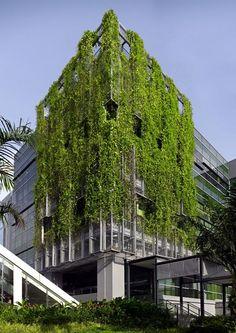 revestimento fachada verde