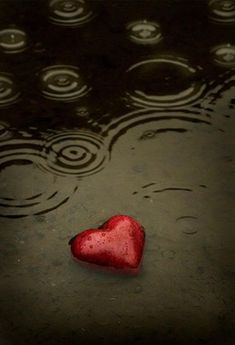 Heart In a Muddy Rain Puddle
