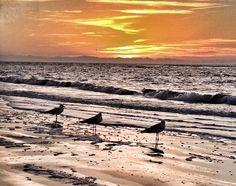 Sunrise on St Simons Island GA