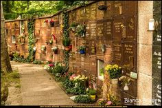 Alter St. Matthäus-Friedhof (Sept 2017) #Berlin #Schöneberg #Deutschland #Germany #biancabuergerphotography #igersgermany #igersberlin #IG_Deutschland #IG_berlincity #ig_germany #shootcamp #pickmotion #berlinbreeze #diewocheaufinstagram #berlingram #visit_berlin #canon #canondeutschland #EOS5DMarkIII #5Diii #Friedhof #cementary #travel #sightseeing
