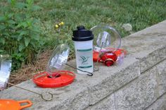 Time to change the nectar. Do it in under 1 minute with the Sugar Shaker Nectar Maker. Don't boil the nectar Shake It! Johns Creek, Wild Birds, Drink Bottles, Shake, Helpful Hints, Sugar, Smoothie, Useful Tips