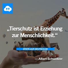 """""""Tietschutz ist Erziehung zur Menschlichkeit"""" Albert Schweitzer"""