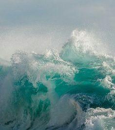 New England Aquarium Seals - New England Aquarium, Victor Hugo, Waves, Victoria, Clouds, Day, Outdoor, Seals, Ocean Waves