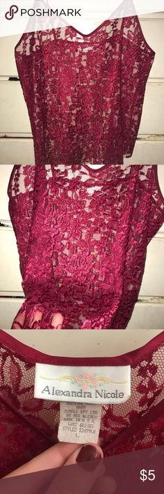 Rose Red See-Through Lingerie Top The cutest Rosy-Red Lingerie top! Size: Large (but fit's rather any size) Alexandra Nicole Intimates & Sleepwear Pajamas