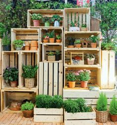 Despite a limited area (and perhaps also budget), there are small backyard design ideas. Check out these ideas that can beautify your small backyard. Unique Gardens, Small Gardens, Beautiful Gardens, Outdoor Gardens, Garden Center Displays, Diy Wooden Crate, Small Backyard Design, Garden Boxes, Balcony Garden