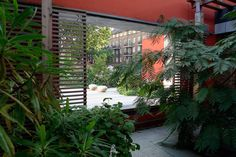 Maggie's Centre London - Rogers Stirk Harbour + Partners (building) & Dan Pearson Studio (garden)