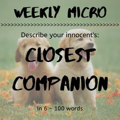It's time for our Weekly Micro! Feel up to the challenge? Post your micro on our forum!