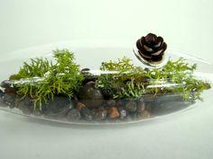 Modern Vessel  Lichen Moss Terrarium