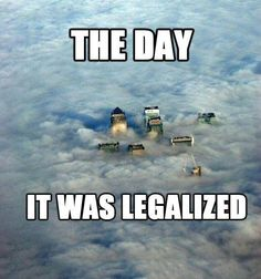Imagine the day that marijuana is finally legalized everywhere. This funny weed meme shows you exactly what the world will look like from the sky! Weed Humor, Weed Memes, Medical Marijuana, Stoner Humor, Spongebob, Funny Images, Funny Pictures, Caption Pictures, Herbs