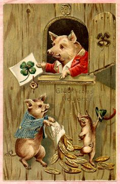 Dressed Happy Pigs New Year Postcard 2