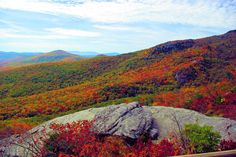 endless patchwork of fall colors in the mountains of North Carolina - from the Blue Ridge Parkway
