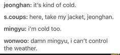 tumblr, seventeen, jeongcheol, meanie, jeonghan