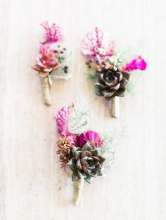 Those colour!  Succulent Boutonierres | The Cutting Garden by Flora Grubb | Emily Scannell Photography