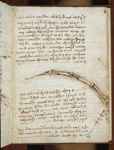 (Leonardo Da Vincis) Codex On The Flight Of Birds Poster Print (24 x 36)