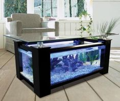 Super cool aquarium coffee table.