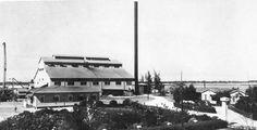 Central Caribe, Salinas, Puerto Rico. Operó entre los años 1930 y 1946. Capacidad: 650 toneladas por día. Propietarios: Godreau, Godreau & Co. (1930).