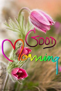 Good Morning Romantic, Good Morning Sister, Good Morning Beautiful Quotes, Cute Good Morning, Happy Morning, Good Morning Flowers, Good Morning Greetings, Morning Hugs, Morning Messages
