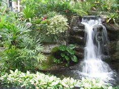 Funkce vody v podobě vodopádu s rybníka mohou být navrženy exotické