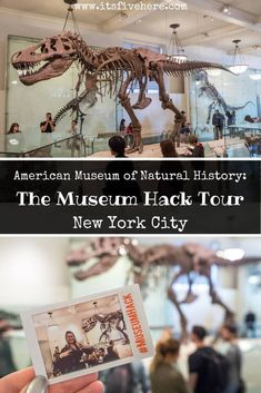 Museum Hack leads renegade tours in some of the world's best museum. Here's the real deal about Museum Hack's tour of the American Museum of Natural History in New York City. Usa Travel Guide, Travel Usa, Travel Advice, Travel Tips, New York City Travel, United States Travel, Travel Around The World, Trip Planning, Family Travel