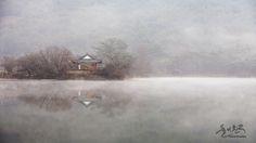 밀양 위양지 - 추천갤러리