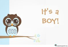 Cute owl on simple background announcing baby boy.