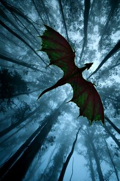 forest dragon in flight