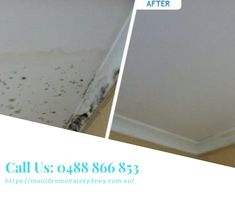 We offer expert mould inspection, removal, and rising damp Sydney. Rising Damp, Sydney, How To Remove, Cleaning, Ads, Home Cleaning