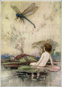 A Water Baby and Giant Dragonfly. Fairy by DandDDigitalDelights, $1.99