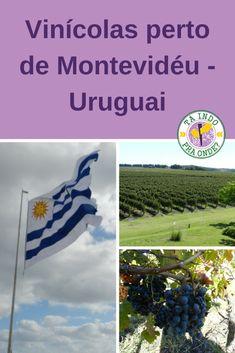 Dicas das melhores vinícolas para visitar perto de Monevidéu - Uruguai