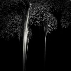 Dancers is a creation by the artist Alexandru Crisan. -------------------------------------------------------------------- [my romania][mineral] [minimal black][hortus conclusus] romania © alexandru crisan Photo Awards, Pigment Ink, Image Photography, Romania, Dancers, Minimal, Fine Art Prints, Black And White, Artist