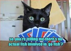Taking my honey out today for a movie and sushi. That means there's a silly cat picture that fits. There always is.