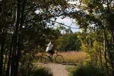 Biking the Wilds Calgary, Biking, Fun Stuff, Things To Do, Country Roads, Park, City, Green, Nature