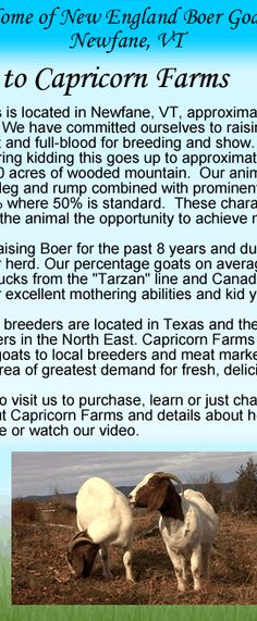 Capricorn Farms - Boer Meat Goats Newfane, VT