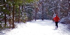 Mirror Lake State Park.  They have snow when we don't.  Worth the trip.  http://dnr.wi.gov/topic/parks/name/mirrorlake/