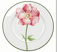 Villeroy and Boch's wild rose pattern