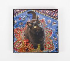 "Black Cat Wood Keepsake Box, ""How High Can I Jump?"" Gifts for Cat Lovers From Deborah Julian Art (2 3/4 Inch Cube) Deborah Julian Art http://www.amazon.com/dp/B01BE0QA5I/ref=cm_sw_r_pi_dp_fr4Swb12B514T"