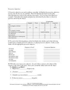 Possessive Adjectives Worksheet | Lesson Planet