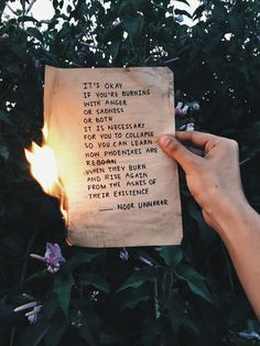 'it's okay if you're burning with anger or sadness or both it is necessary for you to collapse so you can learn how phoenixes are reborn when they burn and rise again from the ashes of their existence' & burn and rise & poetry at unexpected places pt. Poem Quotes, Words Quotes, Life Quotes, Sayings, Qoutes, Tumblr Quotes, Indie Quotes, Edgy Quotes, Hell Quotes