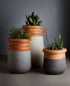 Comissioned by Indigenus to design a planter, Laurie Wiid van Heerden of Wiid Design created Soma, an over-sized planter made from wood and concrete.