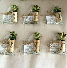 Items similar to 50 personalized succulent or air plant cork magnet favors with heart shaped boxes burnt names - magnets green wedding- rustic wedding on Beautiful Air Plants Display Design to Bring Fresh Air to Your HomePoland and Sweden was Wine Cork Wedding, Wedding Favors, Rustic Wedding, Bridal Shower Gifts For Bride, Bride Gifts, Succulent Favors, Air Plant Display, Wine Cork Crafts, Green Wedding
