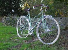 @Arielle Ring got it in my head that I should paint my bike. I think she's right. I'm liking this sea-foam color. or maybe hunter green against a cream seat.
