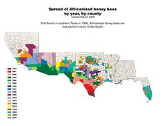 Spread of Bees Nationwide