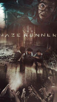 The Maze Runner Poster Maze Runner 2014, Maze Runner Thomas, Maze Runner The Scorch, Maze Runner Cast, Maze Runner Movie, Maze Runner Quotes, Maze Runner Trilogy, Maze Runner Series, Newt Thomas