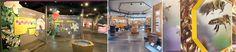 bijeenteelt museum Basketball Court, Fair Grounds, Museum, Fun, Museums, Hilarious