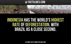 Today's Slides:  12 facts you didn't know about... INDONESIA