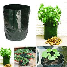 Potato Grow Planter PE Container Bag Pouch Root Plant Growing Pot Side Window Garden