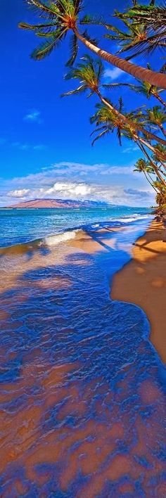 Maui Hawaii Palms Ocean West Maui Photograph - Maui Palms by James Roemmling Dream Vacations, Vacation Spots, Vacation Ideas, Places To Travel, Places To See, Travel Destinations, West Maui, All Nature, Places Around The World