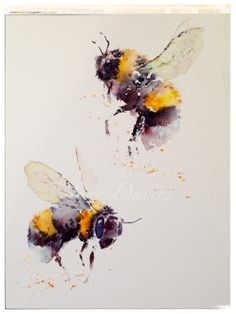 Bees, painting by watercolour artist Jane Davies - beautiful original work Watercolor Animals, Watercolor Flowers, Watercolor Paintings, Watercolour Butterfly, Watercolours, Bee Painting, Painting & Drawing, Bee Drawing, Drawing Birds