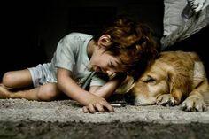 Five amazing pet rescue stories