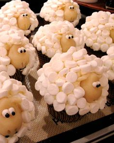 Sheep cupcakes. for Izzie.